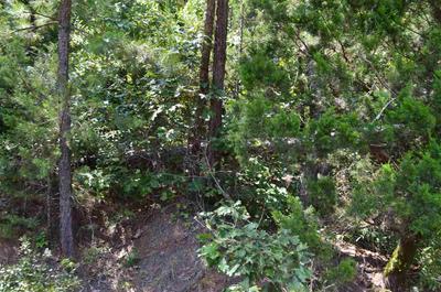 TBD COUNTY ROAD 1772, Jefferson, TX 75657 - Photo 2