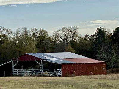 FM 124, BECKVILLE, TX 75631 - Photo 1