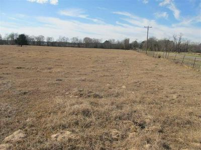 TBD FM 1519, Pittsburg, TX 75686 - Photo 1