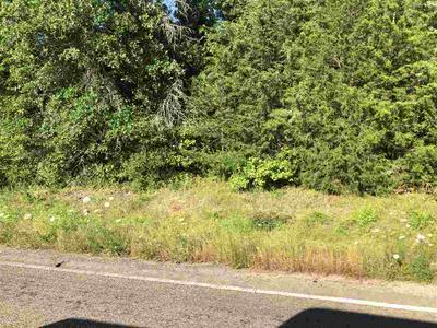 FM 10, Gary, TX 75643 - Photo 1