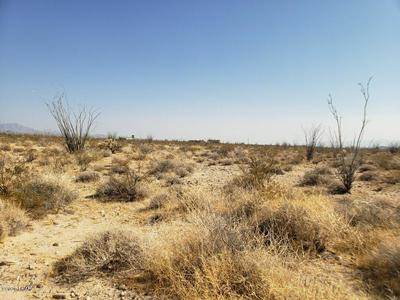 LOT 41 W WILSHIRE RD RD, Yucca, AZ 86438 - Photo 2