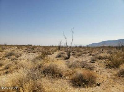 LOT 41 W WILSHIRE RD RD, Yucca, AZ 86438 - Photo 1