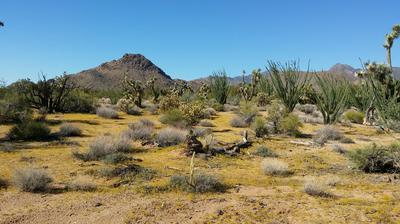 6343 E MOUNTAIN VIEW DR, Yucca, AZ 86438 - Photo 2