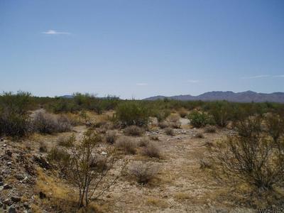 UNK S TRIGGER RD @ CHOLLA W RD, Yucca, AZ 86438 - Photo 1