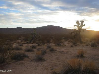 LOT 228 PIPELINE ROAD, Yucca, AZ 86438 - Photo 2