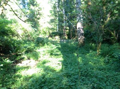 T/L 102 N TIMBER RD., Otis, OR 97368 - Photo 2