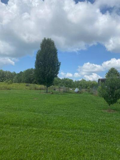 1242 BETHANY RD, Wadley, AL 36276 - Photo 2