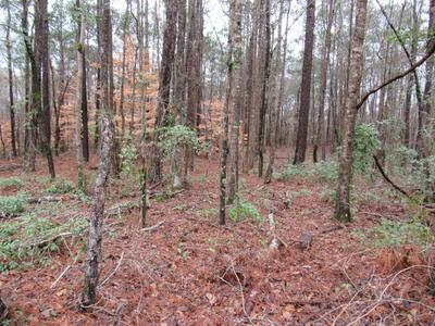1899 RED HILL RD, Eclectic, AL 36024 - Photo 2