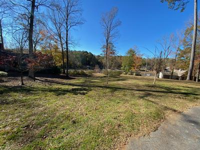 PARCEL B S. TURKEY TROT, Dadeville, AL 36853 - Photo 2