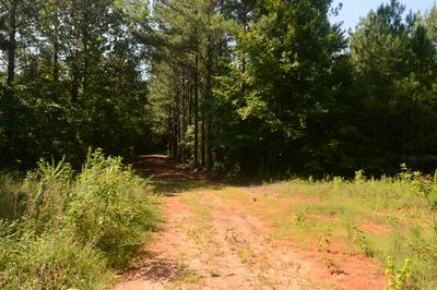 1389 BETHLEHEM RD, Rockford, AL 36026 - Photo 2