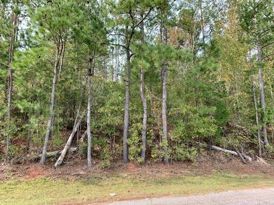 3+/- ACRES OLD MILLERS FERRY ROAD, Dadeville, AL 36853 - Photo 1