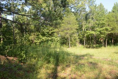 1389 BETHLEHEM RD, Rockford, AL 36026 - Photo 1