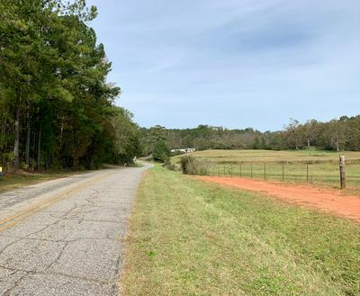 3+/- ACRES OLD MILLERS FERRY ROAD, Dadeville, AL 36853 - Photo 2