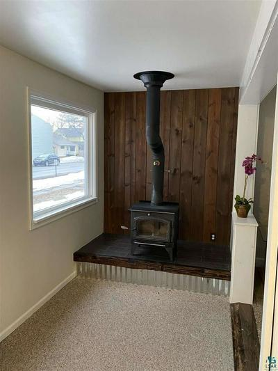 309 1ST AVE, TWO HARBORS, MN 55616 - Photo 2