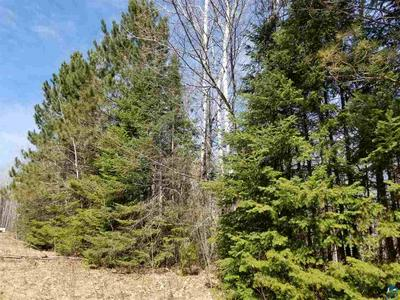 XXX BARK RIVER RD, Herbster, WI 54844 - Photo 1