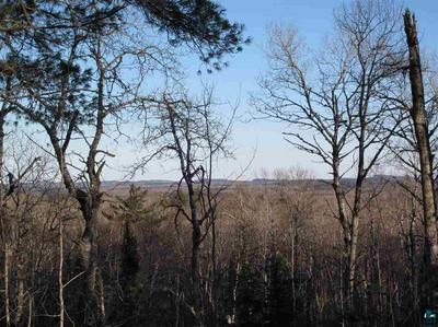 L3 BLK10 PINE PEAK RD, Lutsen, MN 55612 - Photo 1