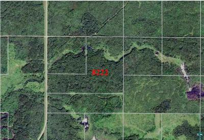 TBD COUNTY RD 8, Littlefork, MN 56653 - Photo 1