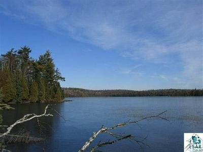 8074 NINE MILE RIDGE RD, Finland, MN 55603 - Photo 1