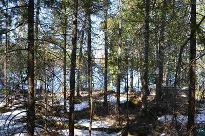 8062 NINE MILE RIDGE RD, Finland, MN 55603 - Photo 2