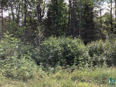 XXX PIONEER JCT RD, Duluth, MN 55804 - Photo 1