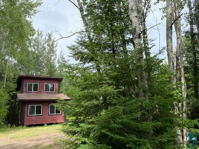 120 CAMP 20 RD, Hovland, MN 55606 - Photo 2
