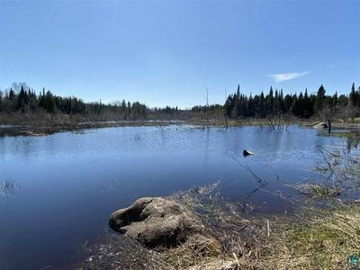 TBD HECKER RD, Finland, MN 55603 - Photo 1