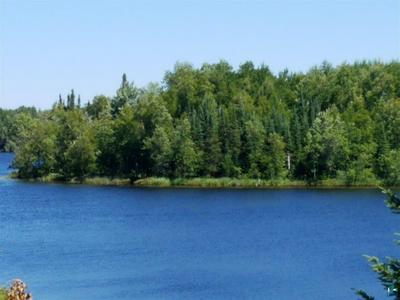 NEAR LONG LAKE RD, Makinen, MN 55763 - Photo 1