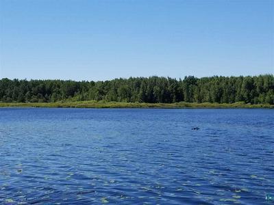 NEAR LONG LAKE RD, Makinen, MN 55763 - Photo 2