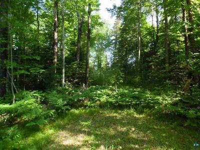 48035 OLD GRADE RD, Cable, WI 54821 - Photo 1