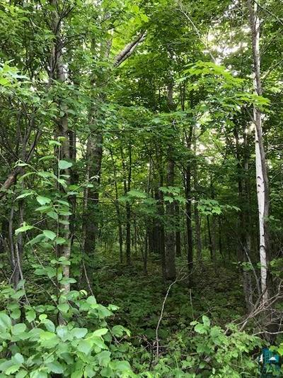 LOT 4 BLK 1 DEERVIEW RD, Two Harbors, MN 55616 - Photo 2