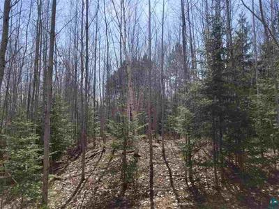 XXX BARK RIVER RD, Herbster, WI 54844 - Photo 2