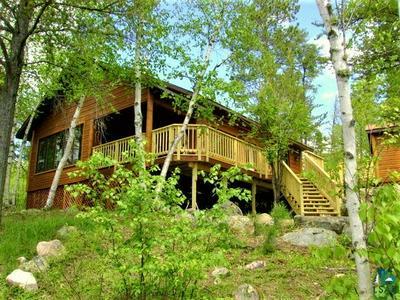 2518 LITTLE BEAR ISLAND ESCAPE RD, Babbitt, MN 55706 - Photo 1