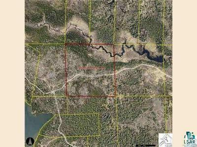 XXXX LOST LAKE RD, Hovland, MN 55606 - Photo 2