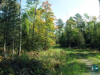 TBD SUNSET RD, Ely, MN 55731 - Photo 2