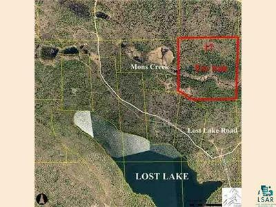 XXX17 LOST LAKE RD, Hovland, MN 55606 - Photo 1