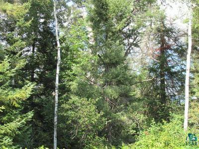 XXX HIGHWAY 21, Babbitt, MN 55706 - Photo 2