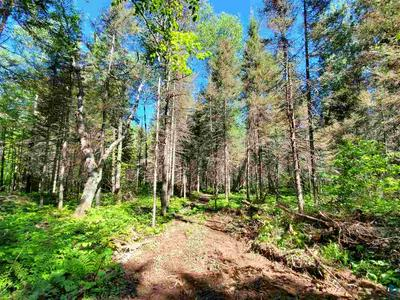 6826 BREEZY LN, Finland, MN 55603 - Photo 2