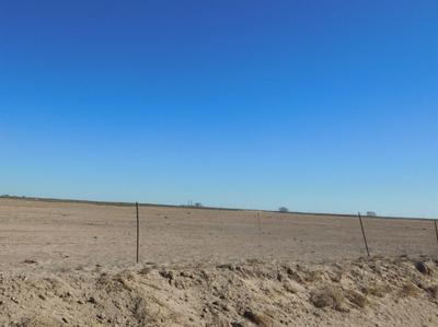 570 COUNTY ROAD 225, Muleshoe, TX 79347 - Photo 1