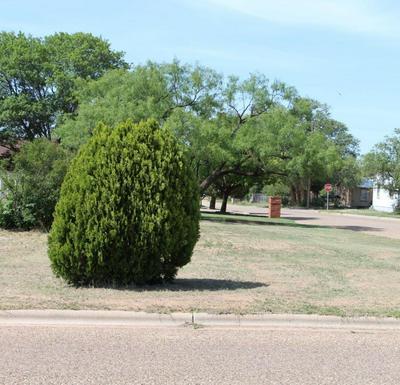 301 AVENUE L, Abernathy, TX 79311 - Photo 2