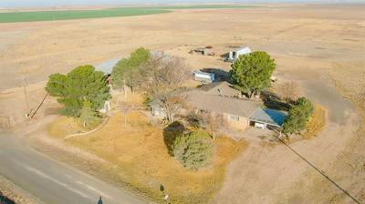 311 COUNTY ROAD 74, Muleshoe, TX 79347 - Photo 1
