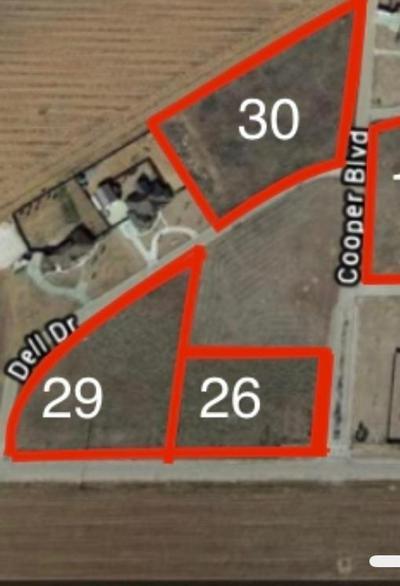 3889 COOPER BOULEVARD, Ropesville, TX 79358 - Photo 2