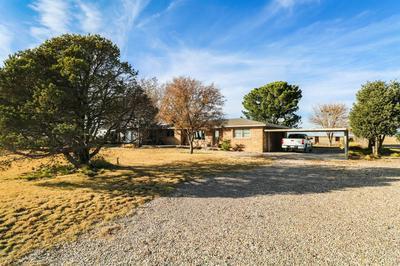 311 COUNTY ROAD 74, Muleshoe, TX 79347 - Photo 2