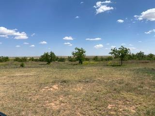 16126 N COUNTY ROAD 3600, Idalou, TX 79329 - Photo 1