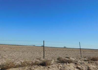 570 COUNTY ROAD 225, Muleshoe, TX 79347 - Photo 2
