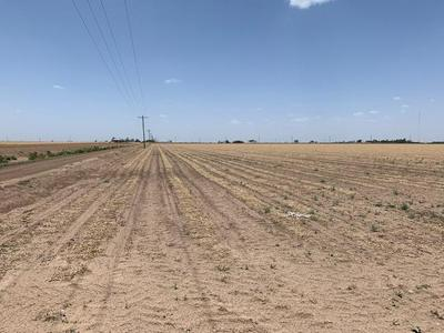 40 ACRES COUNTY ROAD 260, Floydada, TX 79235 - Photo 1