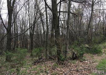 OAK LANE, Schuylkill County, PA 18252 - Photo 2