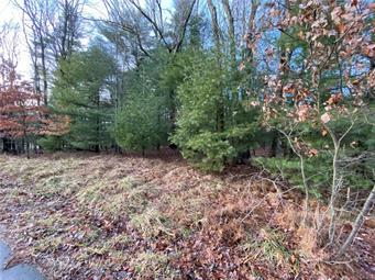 OLD STAGE ROAD, Penn Forest Township, PA 18229 - Photo 1