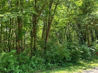 OAK LANE, Schuylkill County, PA 18252 - Photo 1