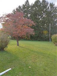 227 W BERGER ST, Emmaus Borough, PA 18049 - Photo 2