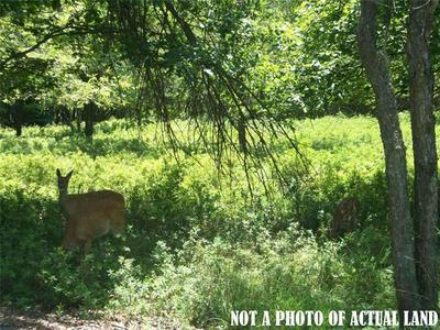 1471 PARKER TRL, Penn Forest Township, PA 18210 - Photo 1
